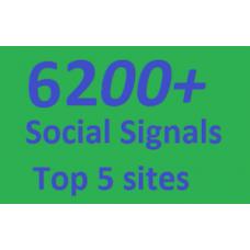 6200+ HQ Social Signals from 4 best Social Media sites PR9