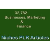 32,000+ Business, Marketing & Finance Niches PLR Articles