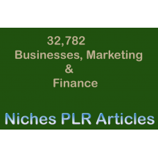 32,000+ Business, Marketing & Finance Niches PLR Articles