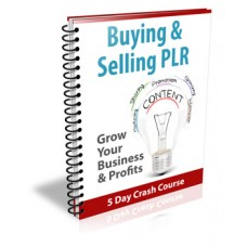 Buying & Selling PLR Crash Course Package