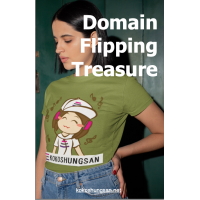 Domain Flipping Treasure Map With MRR