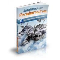 Domaining Profits Avalanche Video Audio Course