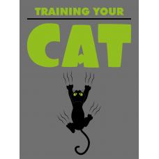 Training Your Cat