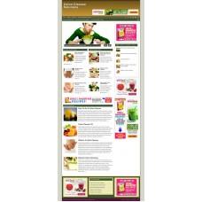 Established Clickbank Affiliate Blog Website-Colon Cleanse Niche