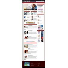 Established Clickbank Affiliate Blog Website-Debt Free Niche