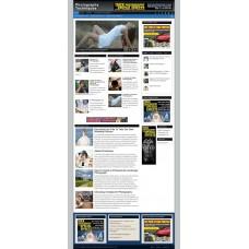 Established Clickbank Affiliate Blog Website-Photography Niche