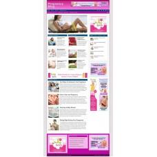 Established Clickbank Affiliate Blog Website-Pregnancy Niche