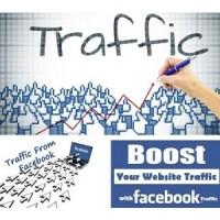 10000 FB Targeted customers - BOOST ALEXA Rank SEO,Real visitors,No Bot!