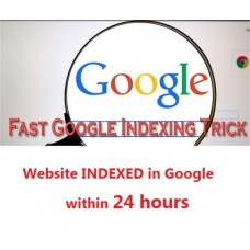 Get your website INDEXED in Google within 24 hours! Website SEO