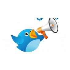 10,000 Twitter Targeted customers – BOOST ALEXA Rank SEO,Real visitors, No Bot