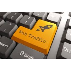 Unlimited website traffic Business VIP Plan
