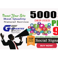 5000 Real SEO PR9-PR10 Social Signals Including Google Share ones pinterest Website Visitors