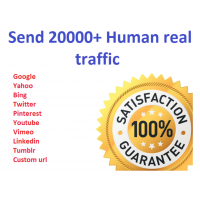 20000+ real human visitors from google, yahoo, bing etc