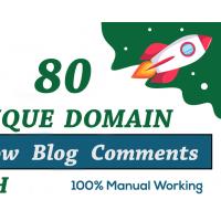 80 SEO unique domains blog comments backlinks